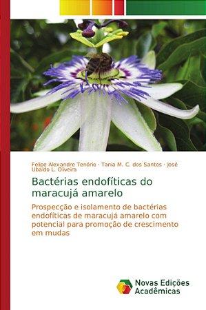 Bactérias endofíticas do maracujá amarelo