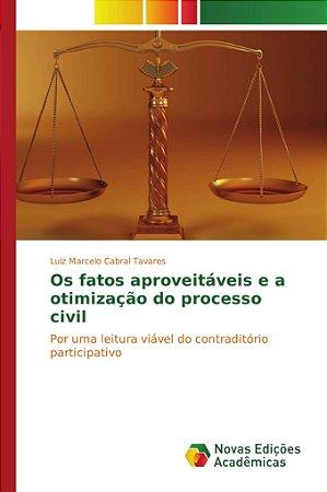 Os fatos aproveitáveis e a otimização do processo civil