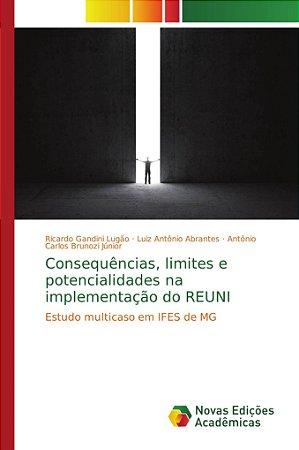 Consequências; limites e potencialidades na implementação do