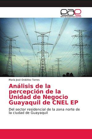 Análisis de la percepción de la Unidad de Negocio Guayaquil