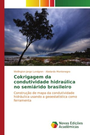 Cokrigagem da condutividade hidraúlica no semiárido brasilei