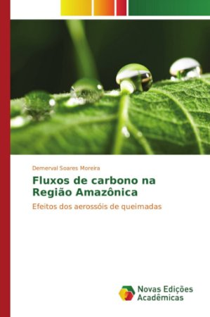 Fluxos de carbono na Região Amazônica