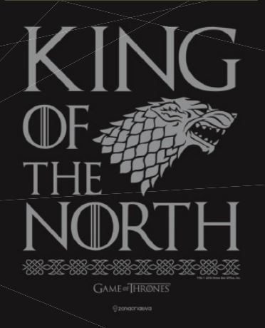 Quadro de Metal 26x19 Stark - King of the North