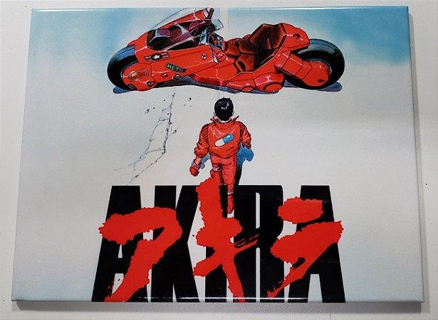 Quadro de Metal 26x19 Akira