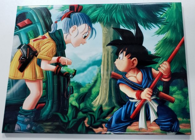 Placa de Metal 26x19 Dragon Ball - Goku e Bulma