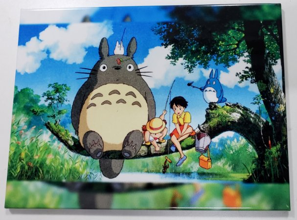 Quadro de Metal 26x19 Totoro - Turma