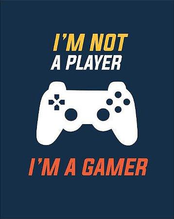 Quadro de Metal 26x19 Playstation - I'M Not a Player I'M A Gamer