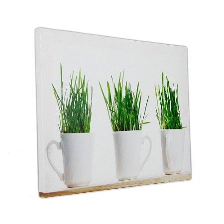 Quadro Decorativo - Mugs Plants - 30x40cm