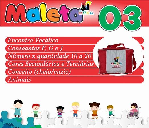Maleta 03 - Kit com 30 Pastas