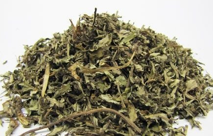 Artemísia (Artemisia vulgaris) - 20 gramas de folhagem triturada