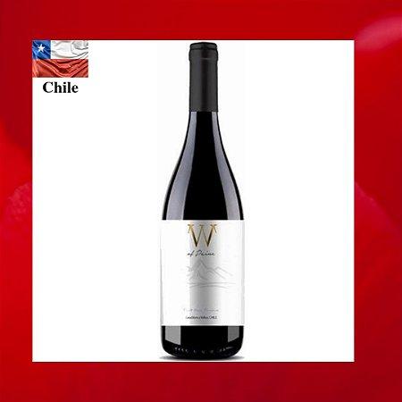 W Of Paine Pinot Noir Reserva 2016