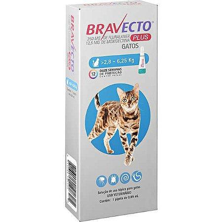Bravecto Plus Antipulgas Transdermal para Gatos de 2,8 a 6,25kg