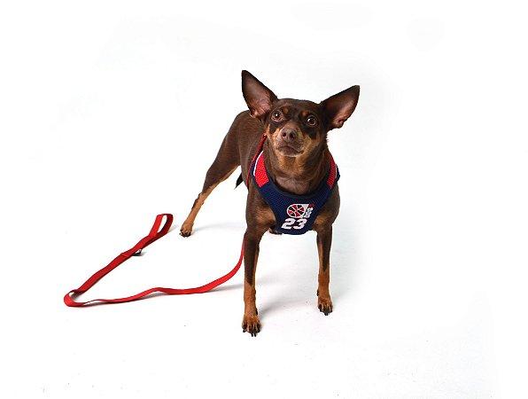 Peitoral com Guia para Cachorro Basketball