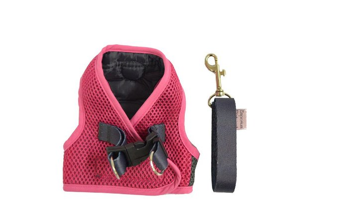 Peitoral com Guia para Cachorro Bicolor Aerado Pink