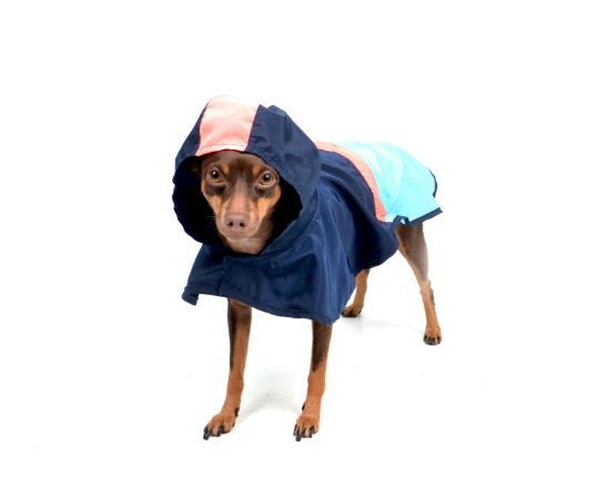 Capa de Chuva para Cachorros Action Marinho