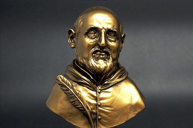 Busto São Roberto Belarmino