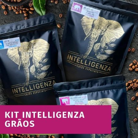 Kit 3 cafés Intelligenza - GRÃOS