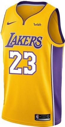 Camiseta Regata Basquete NBA Los Angeles Lakers Y Lebron James #23