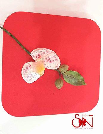 Placa para Bolear de Flores Samira Nunes