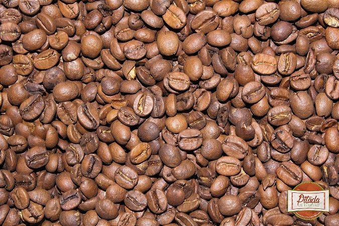 Café Torrado em Grão Gourmet 100% Arábica Rei do Café