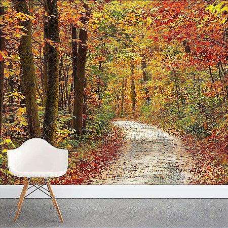 Painel Fotográfico - Caminho na Natureza