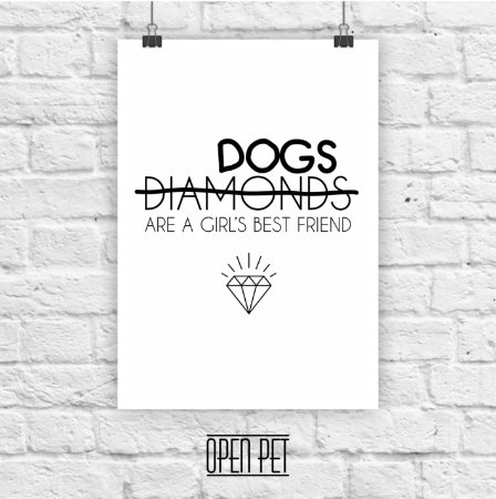 Poster Dog Diamonds