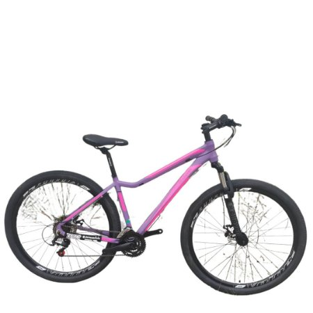 "Bicicleta Elleven Lunna 24V Quadro 17"""