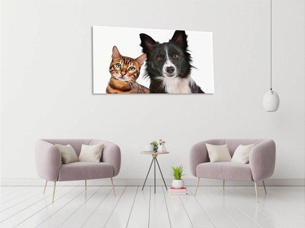 Quadro Decorativo Cavas Cão e Gato