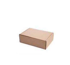 Caixa 2 Parda Lisa Modelo Correio 25x16x8 - Pct com 50 unidades