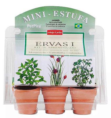 Mini estufa kit de aprendizado Ervas I - Manjericão - Cebolinha - Salsinha