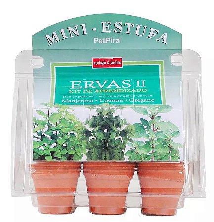 Mini estufa kit de aprendizado Ervas II - Manjerona - Coentro - Orégano