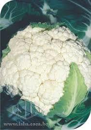 Couve-Flor Bola de Neve (Inverno)