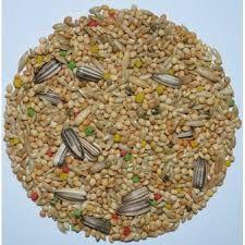 Grão natural para alimentação de pássaros - Painço 1kg