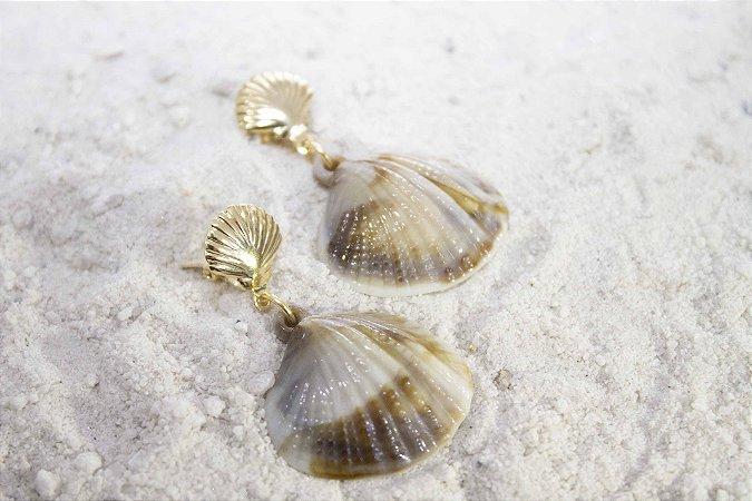 Maresia - Concha dourada