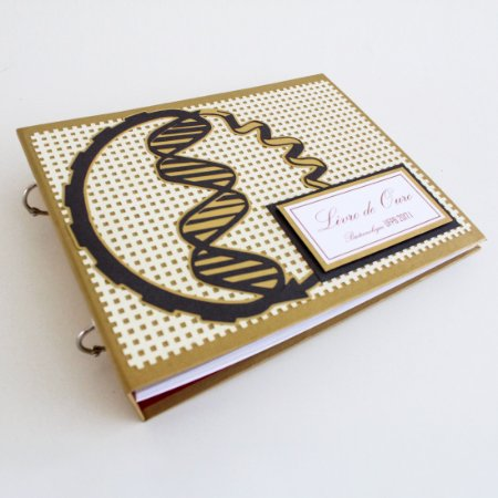 Livro de Ouro mini