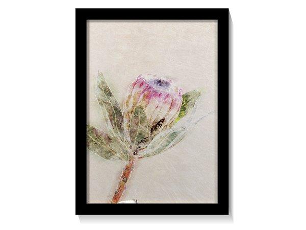 Quadro Flor Prótea Tons Pastel