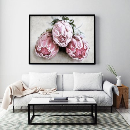 Quadro Flores Protea Art Pink Ice
