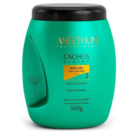 Aneethun Máscara Cachos System Low & No Poo 500G