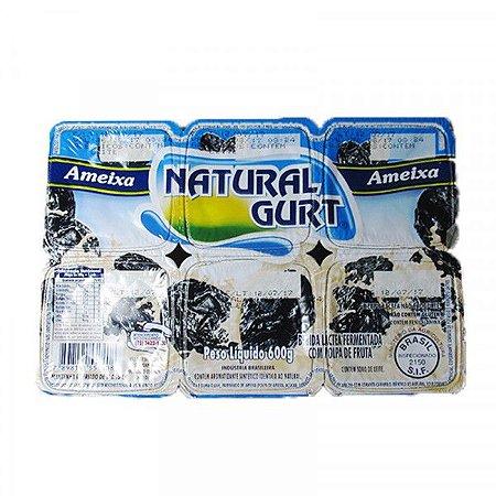 Bebida Lactea Natural Gurt 600G Ameixa Com 6Unidades