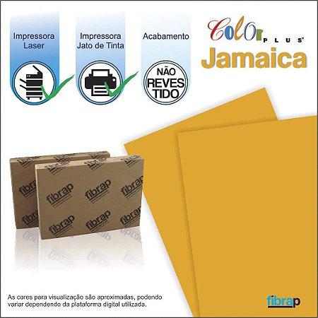 Color Plus Jamaica,  pacote 100fls.