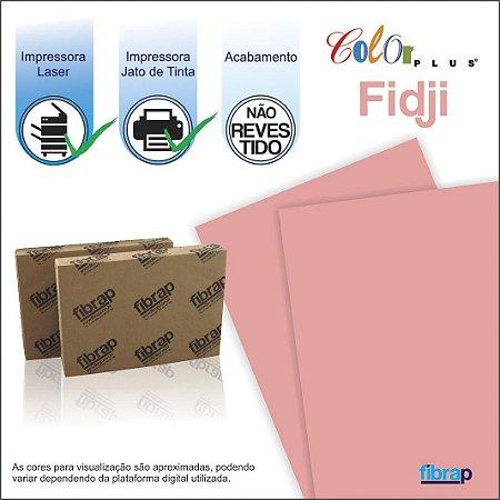 Color Plus Fidji,  pacote 100fls.