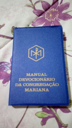 Manual do Congregado ed 2010