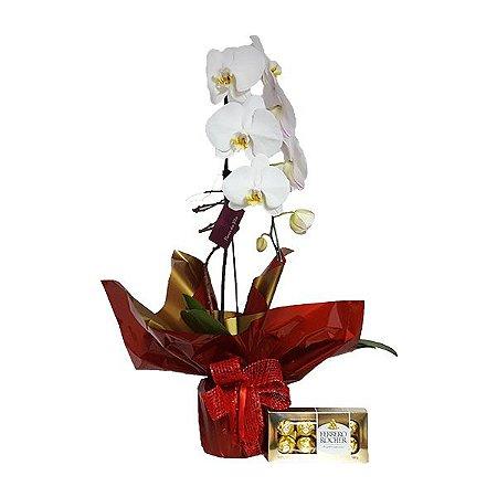 Phalaenópsis Branca com Ferrero Rocher