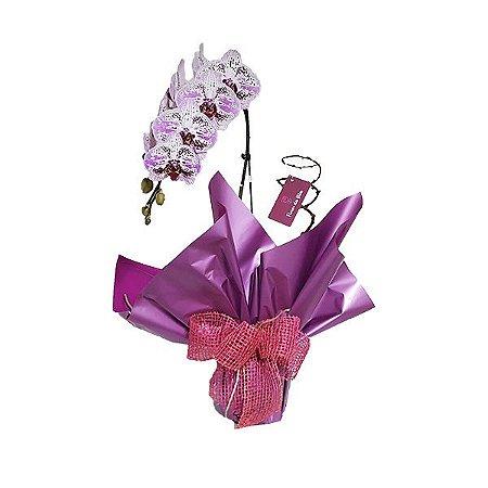 Orquídea Exótica Rosa Presente