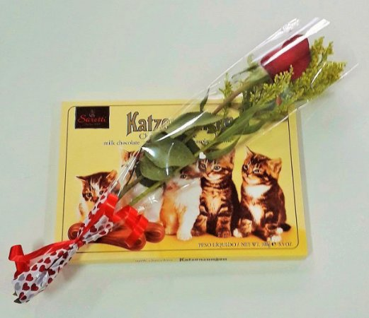 Rosa e Chocolate Língua de Gato Alemão
