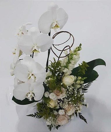 Vaso de Orquídea para Presente