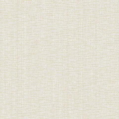Papel de parede Choice premier (Liso) - Cód. CP 9047