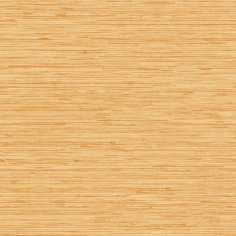 Papel de parede Choice premier (Liso) - Cód. CP 9070