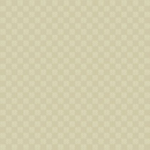 Papel de parede Choice premier (Liso) - Cód. CP 9077