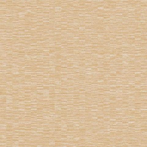 Papel de parede Choice premier (Liso) - Cód. CP 9091